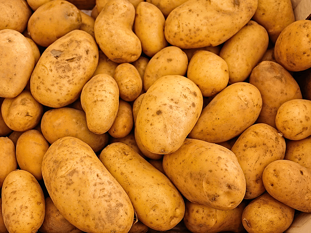 ВЕТАГРО-хороший-картофель